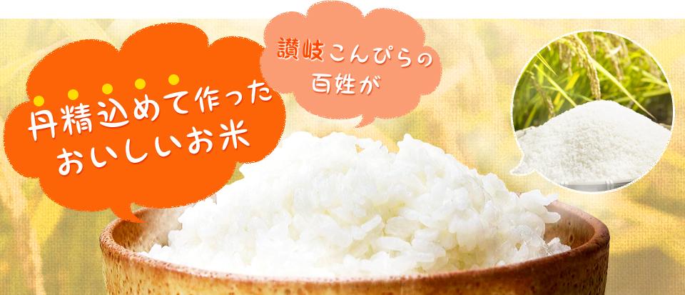 讃岐こんぴらの百姓が丹精込めて作ったおいしいお米