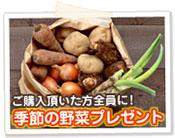 季節の野菜プレゼント